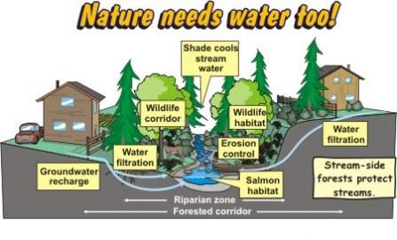 Students Against Water Waste - Why Conserve Water?